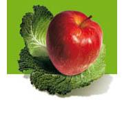 obésité :mangez 5 fruits et légumes par jour.