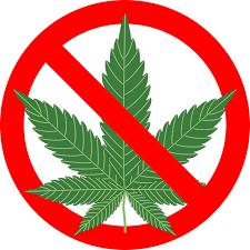 cannabis contre