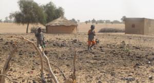 Sahel : Migration précoce pour éviter la sécheresse et la misère. Graine d'Espoir ne fera pas tout mais ...