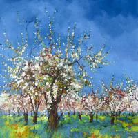 Cerisiers à la Croix d'Albion de Hosotte.